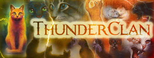 Thunderclan Leaders Thunderclan Leader